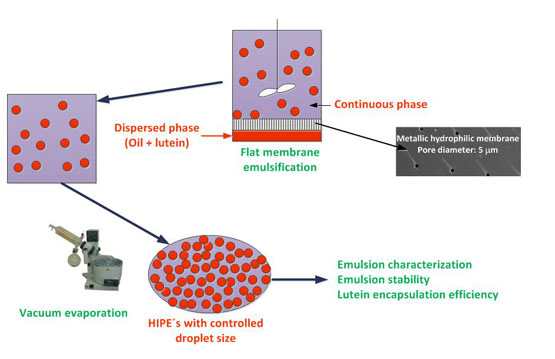 Preparation Of Hipes With Controlled Droplet Size