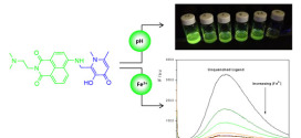 Design of a water soluble 1,8-naphthalimide/3-hydroxy-4-pyridinone conjugate: Investigation of its spectroscopic properties at variable pH and in the presence of Fe3+, Cu2+ and Zn