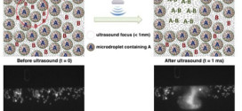 High Spatiotemporal Control of Spontaneous Reactions Using Ultrasound-Triggered Composite Droplets. Advances in Engineering