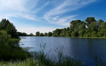 Satellite-supported flood forecasting in river networks