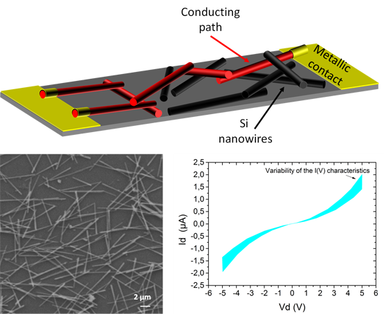 Percolating silicon nanowire networks with highly reproducible electrical properties. Advances In Engineering