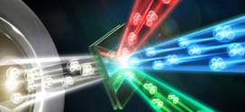 Quantum-enhanced tomography of unitary processes