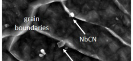 Strengthening Mechanisms in Thermomechanically Processed NbTi-Microalloyed Steel
