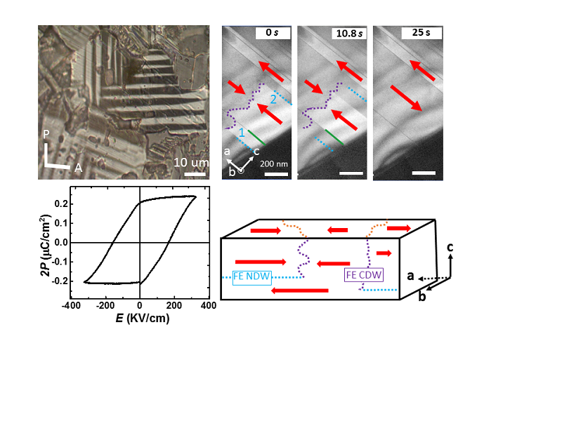 Temperature Ferroelectric Sn Insulator and Its Polarization Switching Kinetics - advances in engineering