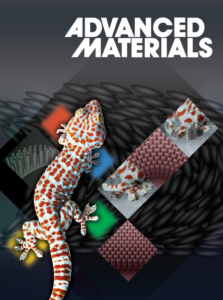 Thermally Active Liquid Crystal Network Gripper Mimicking the Self-Peeling of Gecko Toe Pads - Advances in Engineering