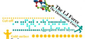 Further understanding of the biased diffusion for peptide adsorption on uncharged solid surfaces that strongly interact with water molecules. Advances in Engineering