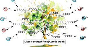 Lignin-graft-poly(acrylic acid) for enhancement of heavy metal ion biosorption. Advances in Engineering