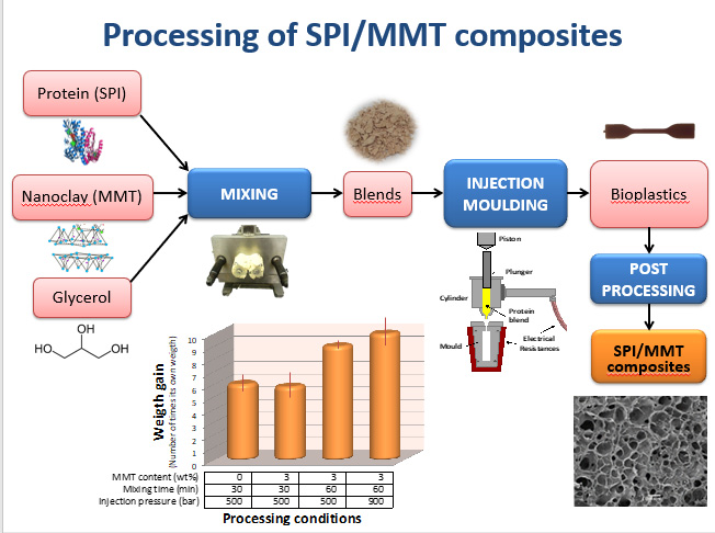 Evaluation of the injection moulding conditions in soy/nanoclay based composites
