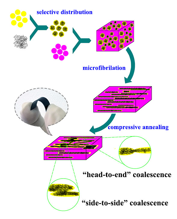 Constructing a double-percolated conductive network in a carbon nanotube/polymer-based flexible semiconducting composite . Advances in Engineering