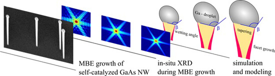 Radial Growth of Self-Catalyzed GaAs Nanowires. Advances in Engineering