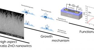 Mechanisms involved in the hydrothermal growth of ultra-thin and high aspect ratio ZnO nanowires, Advances in Engineering