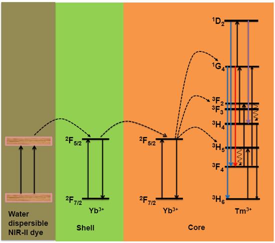 ENHANCED NIR-I EMISSION FROM BROADBAND WATER-DISPERSIBLE NIR-II DYE-SENSITIZED UPCONVERSION OF NEAR-INFRARED LIGHT - Advances in Engineering