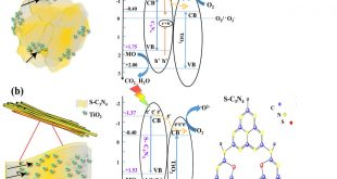 Unique bar-like sulfur-doped C3N4 /TiO2 nanocomposite - Advanced Engineering