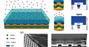 Designing Across the Micro-Nano Boundary: Hierarchically Organized Nafion-Nanopore Structures Enable Electrochemical Diodes - Advances in Engineering