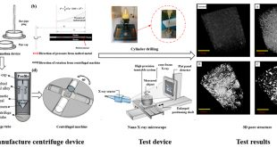 Quantitative characterization of three-dimensional pore structure in hardened cement paste using X-ray microtomography combined with centrifuge driven metal alloy intrusion - Advances in Engineering