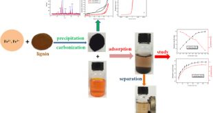 Magnetic lignin-based carbon nanoparticles-Advances in Engineering