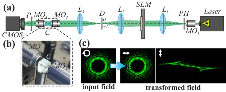 Polarization-dependent transformation of vortex beams by the anisotropic crystal - Advances in Engineering