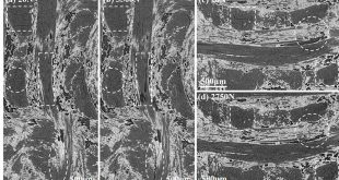 compression damage in a 3D needled-punched carbon fiber-silicon carbide ceramic matrix composite - Advances in Engineering
