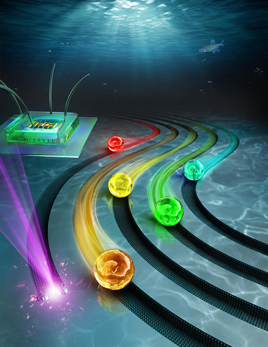Laser-Etching Underwater Superoleophobic Tracks for Guiding Oil Droplets - Advances in Engineering