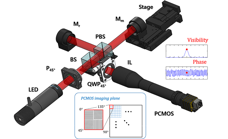 High-speed polarized low coherence scanning interferometry based on spatial phase shifting - Advances in Engineering