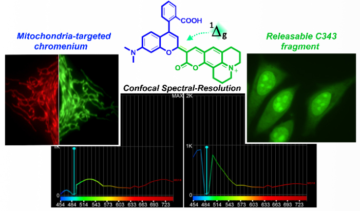Unravelling the modus-operandi of chromenylium-cyanide fluorescent probes: a case study - Advances in Engineering