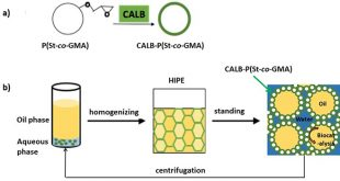 Pickering gel emulsion stabilized by enzyme immobilized polymeric nanoparticles: a robust and recyclable biocatalysts system for biphasic catalysts - Advances in Engineering