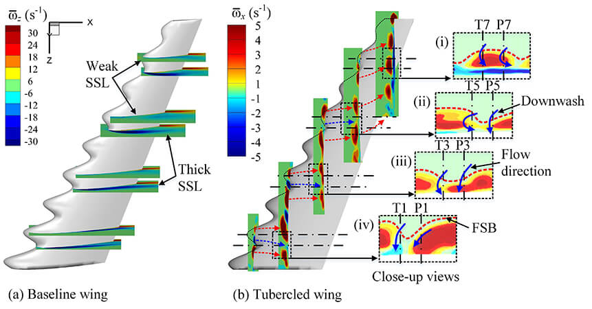 Leading-edge tubercles delay flow separation for a tapered swept-back wing at very low Reynolds number - Advances in Engineering