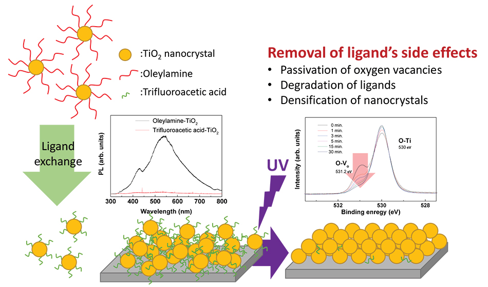 Luminescence property enhancement of TiO2 NCs through oxygen vacancy control by fluorination and UV treatment - Advances in Engineering