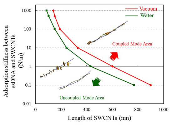 Vibration analysis of single-stranded DNA-wrapped single-walled carbon nanotubes using finite element method - Advances in Engineering
