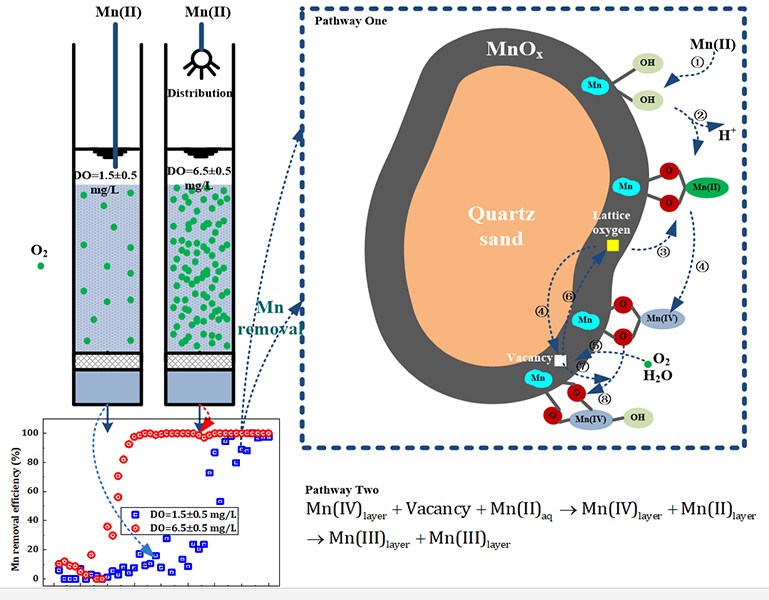 Effects of dissolved oxygen on the start-up of manganese oxides filter for catalytic oxidative removal of manganese from groundwater - Advances in Engineering