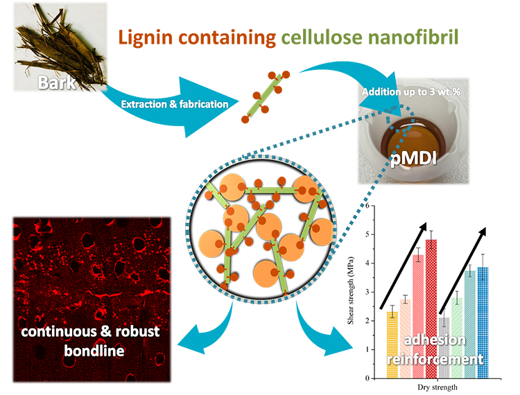 Lignin-containing cellulose nanofibril application in pMDI wood adhesives for drastically improved gap-filling properties with robust bondline interfaces - Advances in Engineering