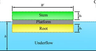solitary wave interaction with a vegetated platform - Advances in Engineering