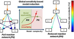 Global sensitivity based uncertainty reduction of lumped models - Advances in Engineering