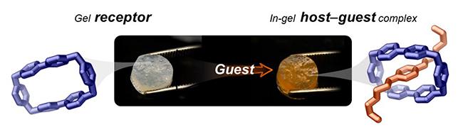 Functional Gels from Natural Nanomaterials - Advances in Engineering