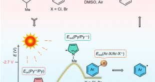 Photocatalyst-free aryl halides reduction using visible light - Advances in Engineering