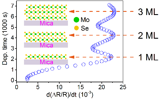 Growth oscillation of MoSe2 monolayers observed by differential reflectance spectroscopy - Advances in Engineering