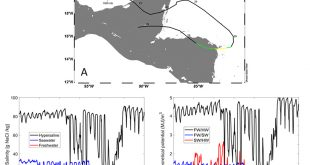 Influence of observed daily variations and extreme meteorological events in salinity gradients of natural environments - Advances in Engineering