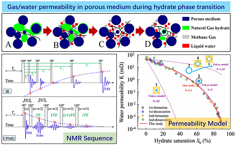 Quantitative determination of pore-structure change and permeability estimation under hydrate phase transition by NMR - Advances in Engineering