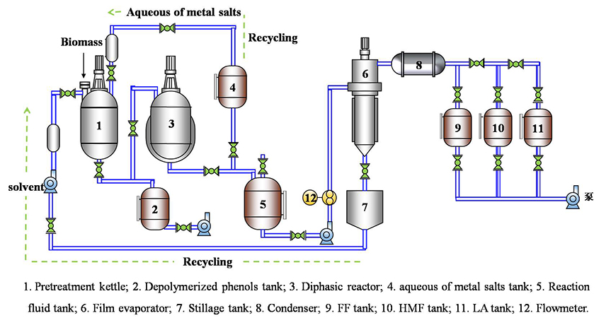Facile Directional Conversion of Cellulose and Bamboo Meal Wastes over Low-Cost Sulfate and Polar Aprotic Solvent - Advances in Engineering