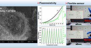 Flexible Sensor based on Three Dimensional Polymer Nanocomposites - Advances in Engineering