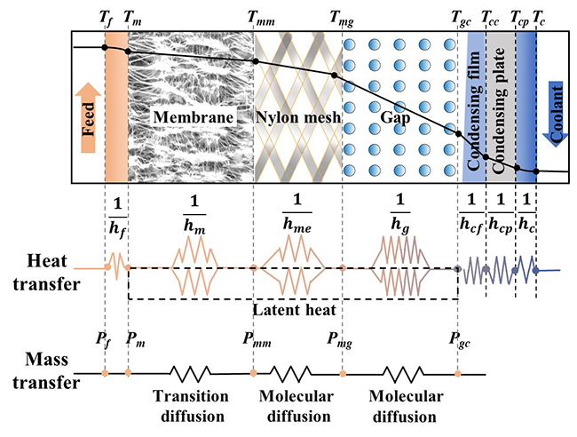 A step forward for understanding the transport behaviors during the material gap membrane distillation desalination processes - Advances in Engineering