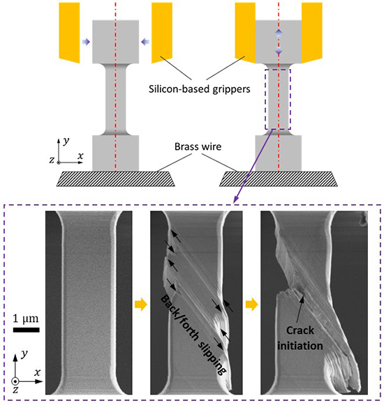 Load-dependency of damage process in tension-compression fatigue of microscale single-crystal copper - Advances in Engineering