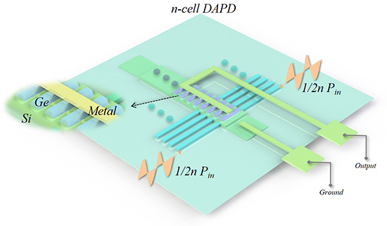 Germanium photodetector with distributed absorption regions - Advances in Engineering