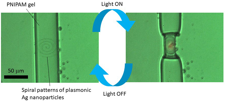 Femtosecond laser writing of plasmonic nanoparticles inside PNIPAM microgels for light-driven 3D soft actuators - Advances in Engineering