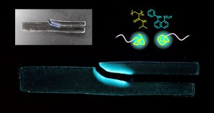 A facile mechanochemical technique to visualize polymer chain breakage in hydrogel - Advances in Engineering