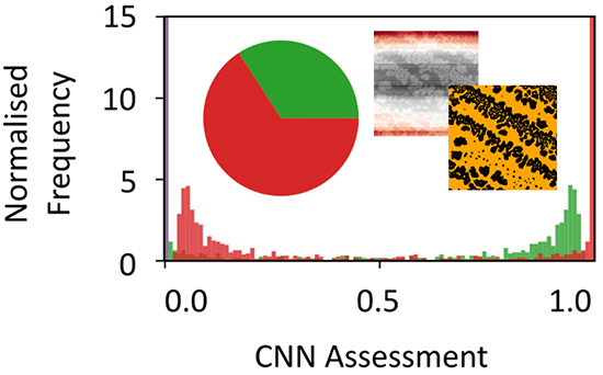 Sifting Self-Organisation: Automated Classification of Nanostructures - Advances in Engineering