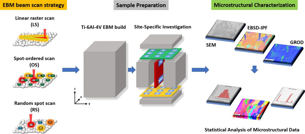 microstructure in additively manufactured Ti64-Advances in Engineering