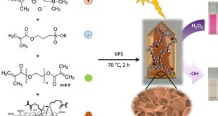 Graphene quantum dot-based hydrogels for photocatalytic degradation of organic dyes - Advances in Engineering