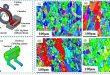 Study of the microstructure, bonding evolution and mechanical properties of continuously extruded magnesium AZ31 sheet - Advances in Engineering